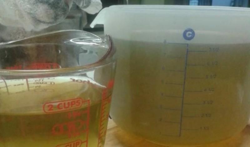 Dieses Unkraut hilft dir gegen Krebs und Pickel. So machst du daraus leckeres Gelee.