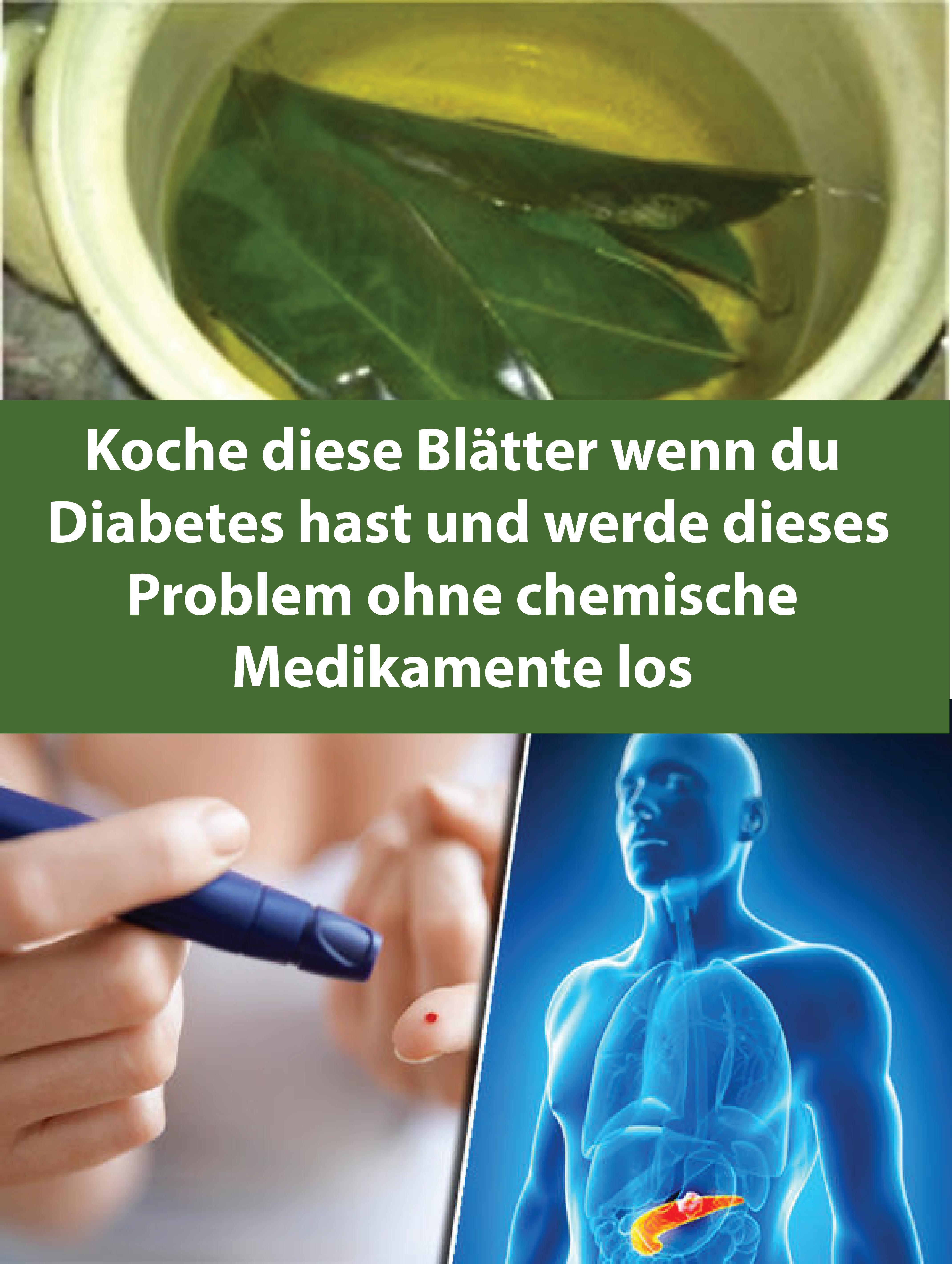 Koche diese Blätter wenn du Diabetes hast und werde dieses Problem ohne chemische Medikamente los