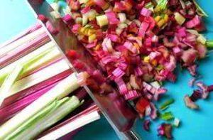 Mangold gibt es in verschieden Farben