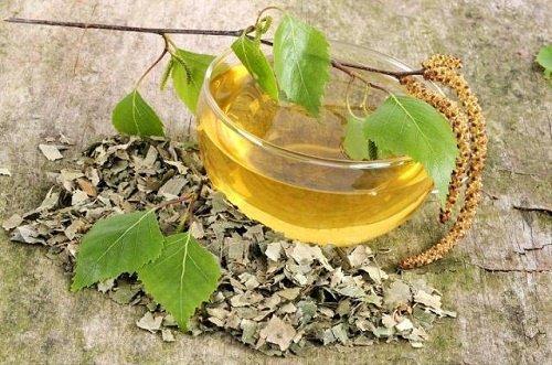 Combat Cystitis natürlich mit 5 natürlichen Infusionen