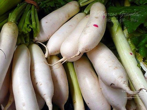 Vegetarische Rezepte als Ersatz für Nudeln, Reis und Kartoffeln