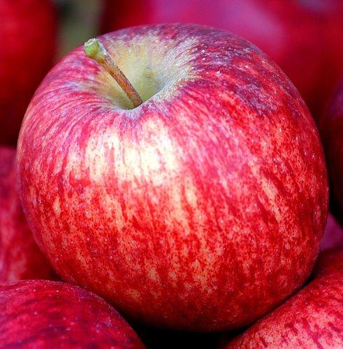Lebensmittel, die Ihnen helfen, nicht fett zu werden