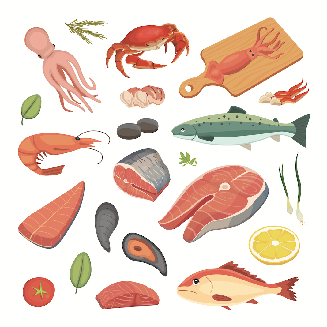 lebenmittel fleisch schalentiere muscheln fisch